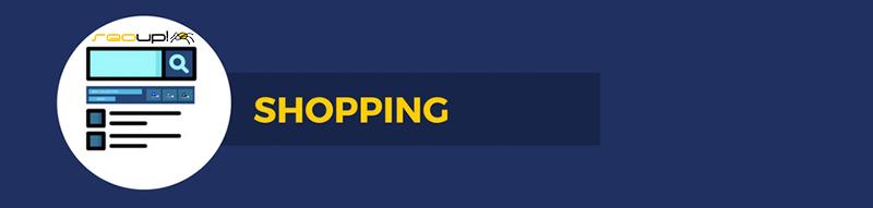 Tipos de campañas: Shopping.