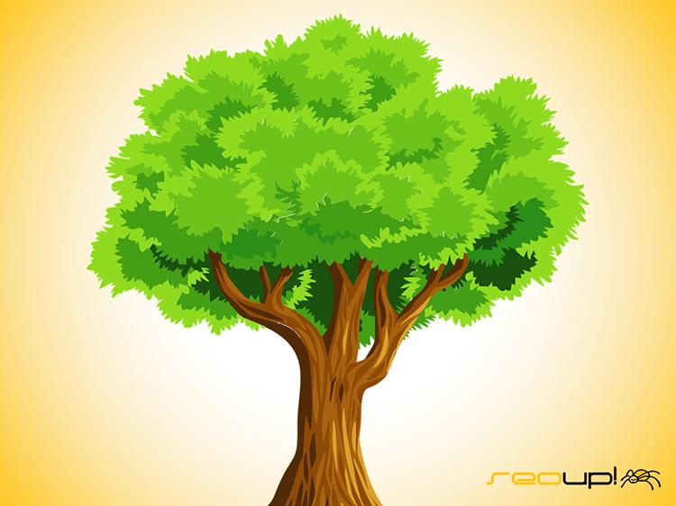 El contenido evergreen relacionado con la naturaleza.